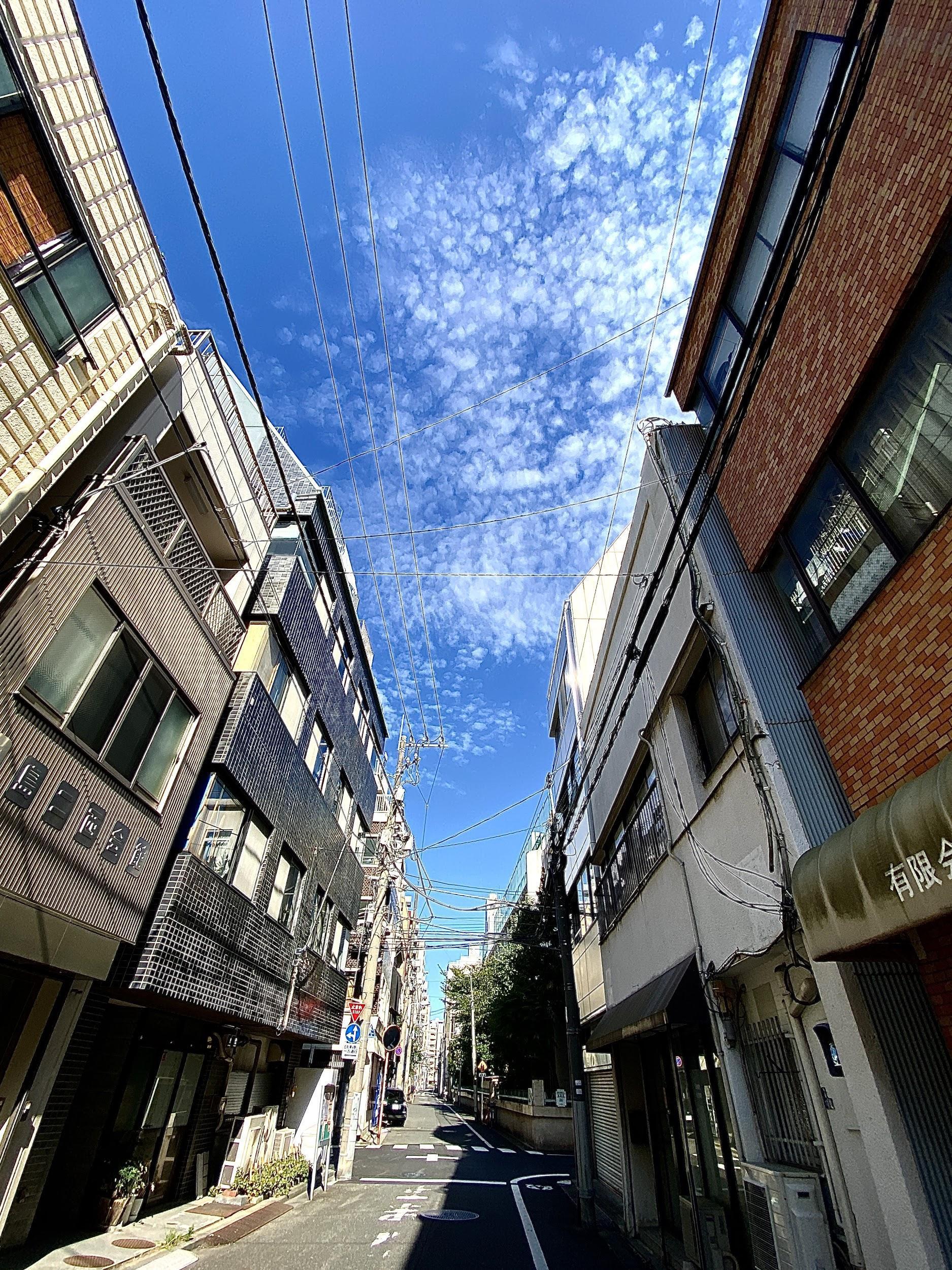 岡田さんが撮影した旅行の写真