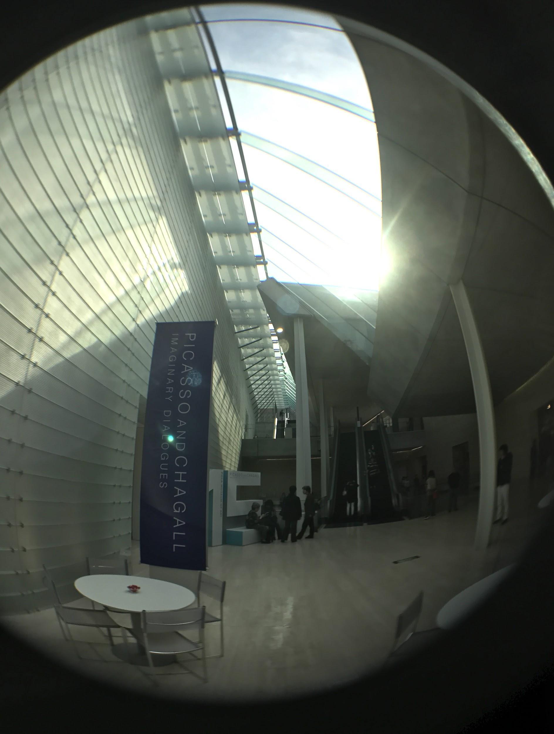 岡田さんが魚眼レンズで撮影した画像