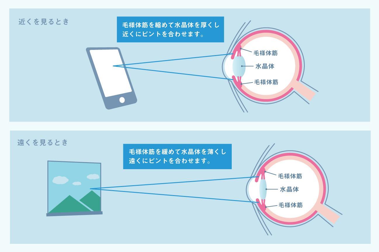 スマホ老眼の説明の画像